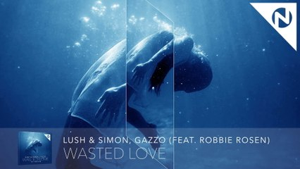 Lush & Simon - Wasted Love