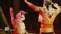 La France vers l'interdiction des cirques avec des animaux sauvages