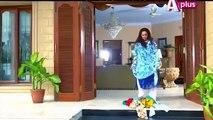 Bheegi Palkein – Episode 25 | A Plus Entertainment