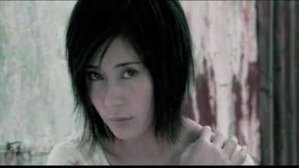 Gia Lin - Ai Qing Fei Zou Liao