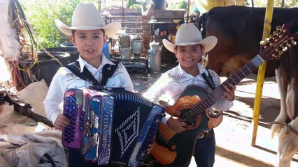 Los Bañales Juniors - El Sube Y Baja