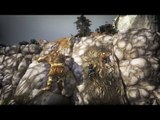 Brothers A Tale of Two Sons : Trailer