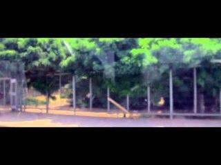 Jorge Gonzalez   Nada es para siempre   Video Lyric Final