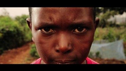Aloe Blacc - Live My Life