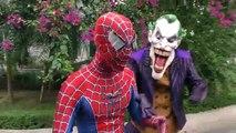Spiderman Fall Elephant Attack!!! superheroes Fun Venom Hulk Joker Children Action Movies Animals
