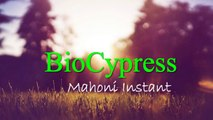 0815-7109-993 (Bpk Yogies) Biosipres Bandung, Biocypress Indonesia