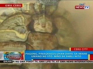 Pagong, pinagkaguluhan dahil sa imahe umano ng Sto. Niño sa shell nito