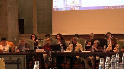 Didier Mouly - Projet TDN Areva Malvési - Conseil municipal de Narbonne