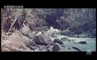 《黑林鼓声》1985年 part 1/2