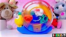 Vidéo jouet escargot musical Fisher Price boîte à forme : jeux d'éveil pour enfants et bébés