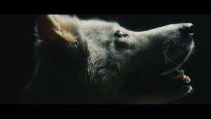 Thundamentals - Wolves