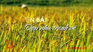 02 Tap 2 Kham pha Viet Nam cung Robert Danhi Yen B