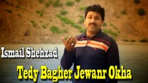 Ismail Shehzad - Tede Bagher Jewanr Okha