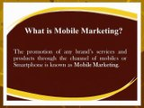 Mobile Marketing Services - B2B Email Experts
