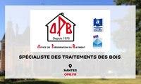 Traitement bois, combles, toitures à Nantes - Problèmes de termites (44)