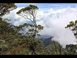 Sabah, Borneo through the eyes of a GoPro