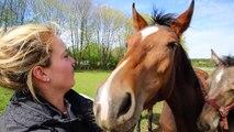 Charline, vétérinaire et inséminatrice équine à Arlon