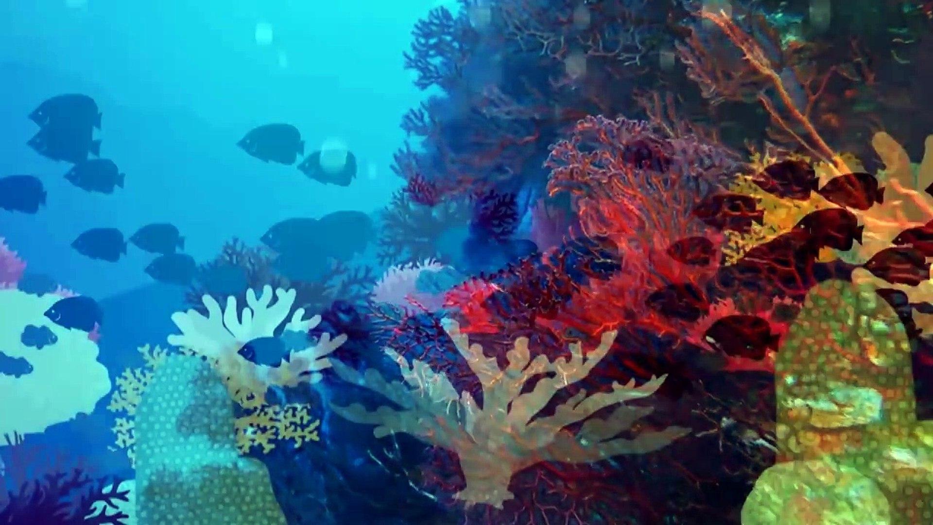 documentary | world ocean day | documentary bbc science | documentary science |