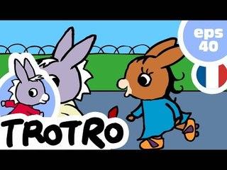 TROTRO - EP40 - Trotro champion de judo