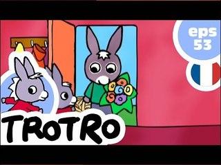 TROTRO - EP53 - Trotro et le bouquet