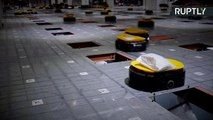 Army of Delivery Robots Sort 200K Parcels Per Day Without a Coffee Break