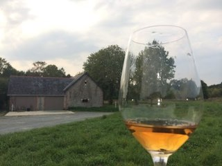 Travel to Loire Valley France: Uncorking the French Wine Region