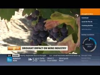 Monique Soltani Reports for The Weather Channel: Napa Valley Drought on AMHQ