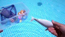 FINDING DORY SWIMMING FISH TOYS IN THE POOL OR TUB NEMO MARLIN MR RAY DISNEY PIX