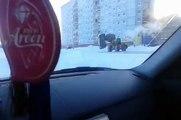 Un homme se sert d'un tractopelle pour déplacer une voiture ventouse.