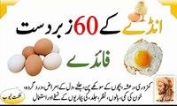 egg benefits egg benefits in urdu hindi egg ke fayde egg ke fawaid egg ke faide ande ke fayde ande