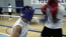 Born to Fight Trailer