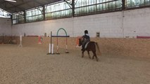 Laser poney au club hippique
