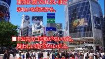 【海外の反応】パリ市民が驚愕!パリで影響を与えた日本人の行動がすごい!日本人が始めた清掃ボランティア活動に海外から絶賛の声!