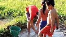 Amazing Fishing at Pailin Province - Cambodia Traditional Fishing - Khmer Net Fishing (Part 218)
