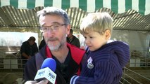 D!CI TV : Hautes-Alpes : Dans les travées du salon de l'élevage