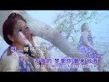 湛爱铃Irene Tam - 经典魅力恋歌IV【晴时多云偶阵雨】