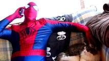 Spiderman vs Catwoman vs Batman in Real Life! Catwoman Kidnaps Batman - Fun Superhero Movie _)
