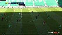 Robert Beric  Goal HD - St Etienne 1-0 Rennes 23.04.2017