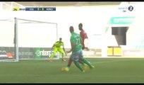 Robert Beric Goal HD - St Etienne 1-0 Rennes - 23.04.2017