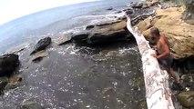 Rusia Mar olas vlogs vino de la casa playa del mar negro ardilla en un árbol 2016
