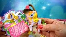 Caja Flor poni dulce pony flor