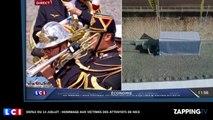 Défilé du 14 Juillet : L'émouvant hommage de la fanfare pour les victimes de l'attentat de Nice (Vidéo)