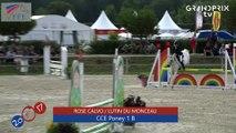 CCE Poney 1 B FFE