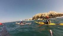 Les îles du Frioul en kayak de mer