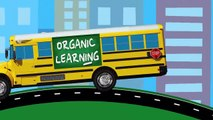 Learning Colors for Toddlers - Learn Colours Street Vehicles, School Buses, Big Rig Trucks for Kids-vPPXyTq