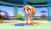 PAW Patrol - S 1 E 2 - Pup Pup Boogie - Pups in a Fog