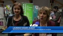D!CI TV : le forum de l'emploi de Digne rencontre un nouveau succès