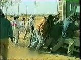 NHKプロジェクトX|第099回「運命のゴビ砂漠」~人生を変えた三百万本のポプラ~