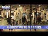 미술 작품 '반 고흐'가 애니메이션으로 탄생하다! [광화문의 아침] 322회 20160923