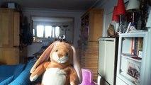 "Wiwi muppetshowise ""alone alone and alone"" de Terumasa Hino"